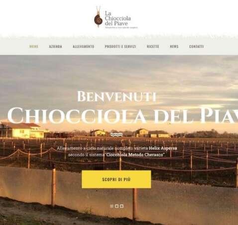 Benvenuti nel nostro nuovo sito!
